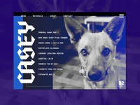 Casey Pawl Homepage