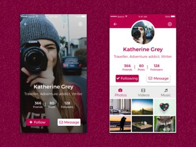 UI 1.0 instagram insta like photos follower follow user profile view ux ui