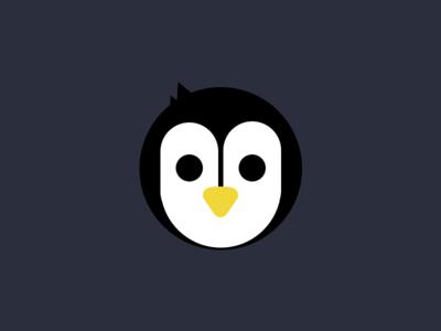 PGH Penguins