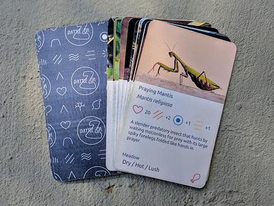 BattleZoa: Card Design (~2013)