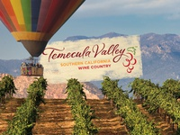 Balloon and Wine Festival Photo Op Background