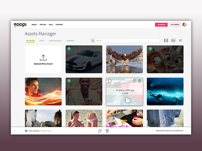 Goopi Vido Ads video photo dashboard file file manager icons psd ui ux