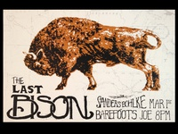 The Last Bison gig poster