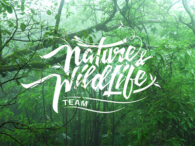 Nature Wildlife logo calligraphy lettering nature wildlife logo design design