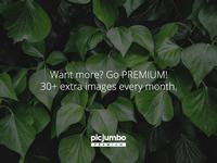 picjumbo PREMIUM banners