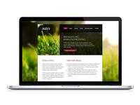 Website design for family graphic studio