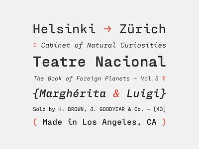 Fraktion Mono italics typeface font typography type