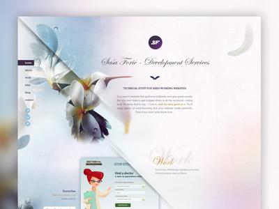 SF website portfolio front-end developer sf hummingbird homepage