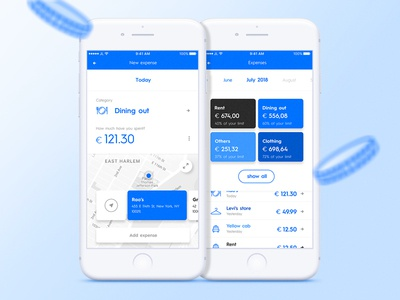 Blue cheese blue interface minimalism clean pocket management manager money ui app