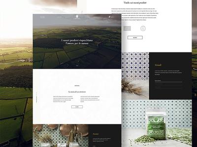 Montalera elegant minimal flat site web branding design ui