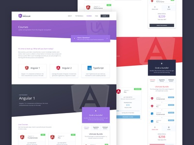Ultimate Angular Courses website web ui marketing landing page courses design