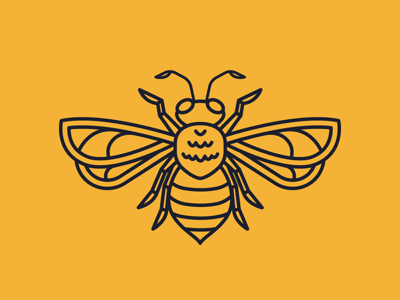Bee Illustration #1 vector 2d insects insect bees bug bee branding icon flat logo illustration design
