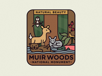 Muir Woods national park sun deer slug fox river owl ladybug salmon tree badge icon 2d flat illustration design logo