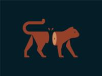 Novem Vitae Cattus