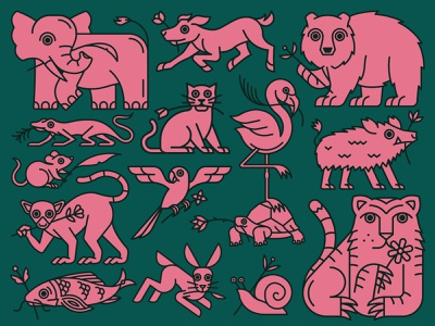 Animal House Poster illustration flower logo illustraion icon lizard lemur flamingo rat rabbit parrot dog cat elephant boar turtle fish bear tiger poster