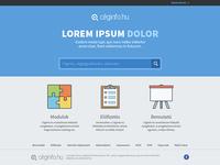 Céginfo.hu redesign