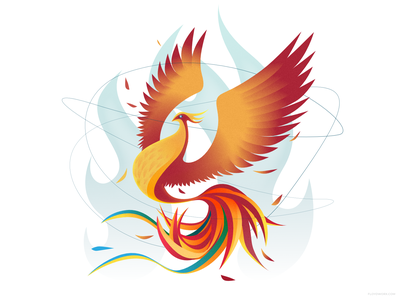 Phoenix rising affinity wing flame feather vector character design illustration bird fire