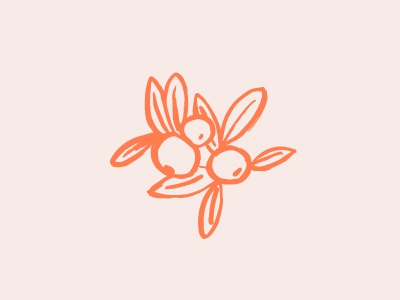 Orange Co. illustration orangejuice orangetree oranges