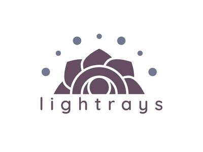 Lightrays Logo branding chakra reiki logo identitydesigner identity design logodesigner logodesign logo