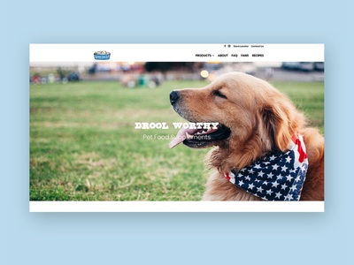 Nummy Tum Tum Web Design pet food website website design small business wordpress webdesign
