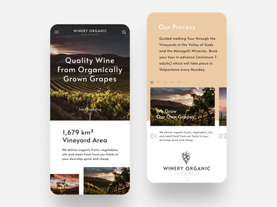 Mobile Website for Winery WordPress Theme responsive landing page landing interface ux ui grapes website vineyard layout typography grid scroll motion animation web design app mobile wine winery
