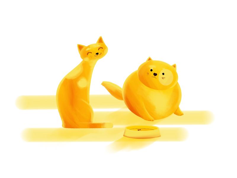 Did you see my ... comics kittens cat procreate cats flat illustration
