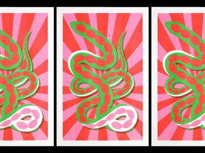 Snake Print design stripes starburst pink red green risoprint risograph riso art print illustration illustrator snake