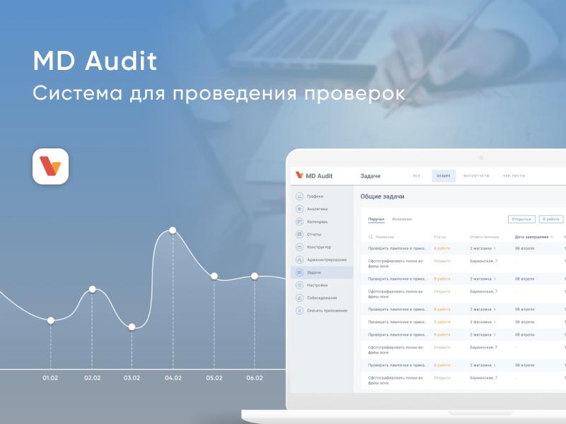 Header for MD Audit system redesign rebranding web system branding screen ui design