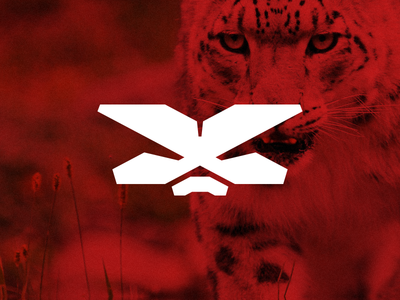Xco Sports Logo Proposal wilderness emotion x mark symbol logo equipment outdoor extreme sport