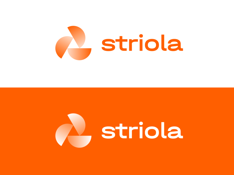 striola.com - logo modern branding software saas logo wordmark