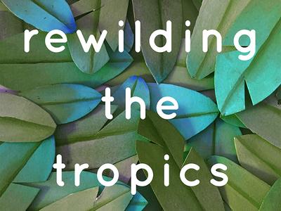 Rewilding the Tropics