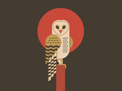 Barn Owl vector poster feathers sun owl geometric animal wood outdoors nature bird barn owl illustration