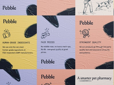 Pebble ad brass hands d2c direct to consumer pills supplement cat dog pet packaging website icon icons logo typography brand branding brand identity illustration