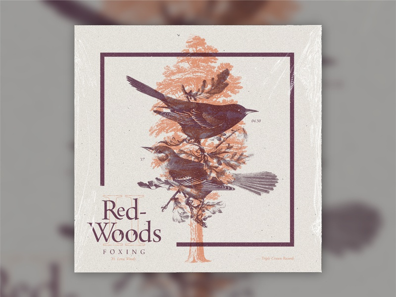 B-Sides — Redwoods II overprint sequoia birds foxing redwoods album art b-sides