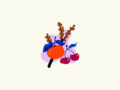 Orange & Cherry fruit illustration fruit graphic  design vector digital illustration design
