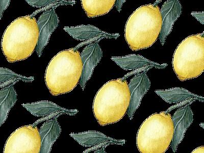 Lemons on Lemons on Lemons fruit design brand illustration feminine branding watercolour painting watercolor lemon icons lemon