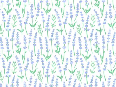 lavender pattern. floral lavender design pattern surface