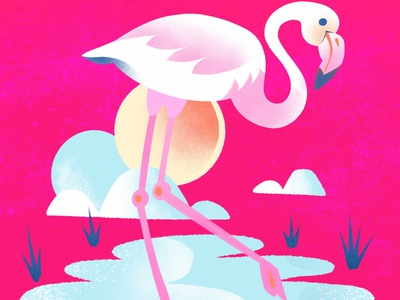 """F""=Flamingo flamingo animal childrens illustration childrens book character alphabet texture series procreate illustration color"