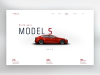 Model S Concept Site