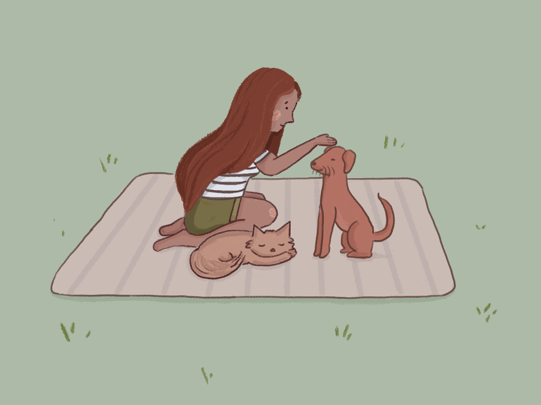 Summer Picnic color design dogs character cute illustration
