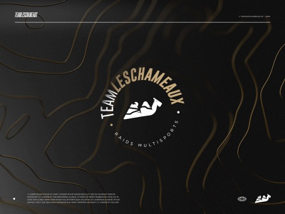New identity - Team Les Chameaux branding identity logotype logo team camel 3d