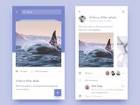 photo-sharing app