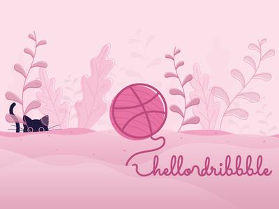 Kitty - Hello Dribbble