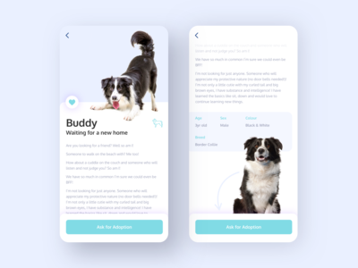 App for Dog Shelters