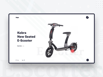 E. Scooter web UI