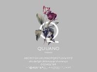 Quijano Typeface
