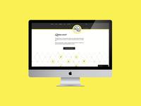 Website Design for El Mercado Libre