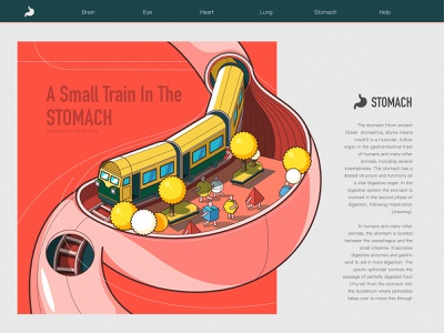 A train in the stomach map stomach station train web poster illustration