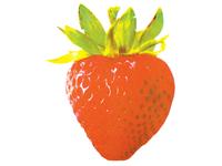 CMYK Strawberry Print