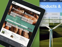 Cargill Website Redesign